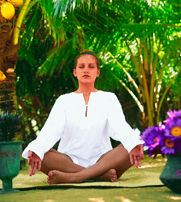 Ayurveda and Wellness Tours